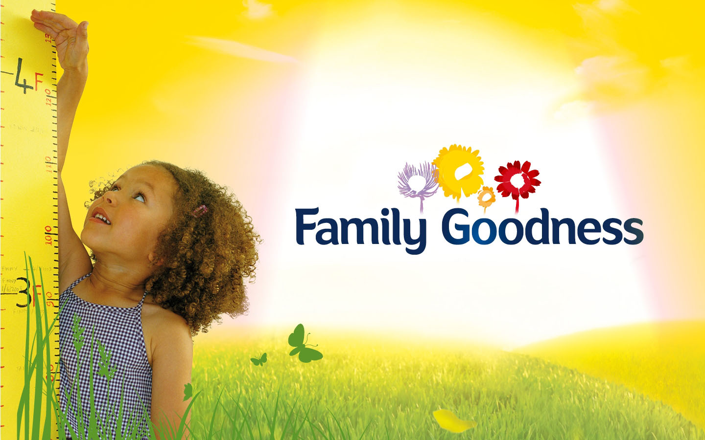 Family Goodness - Brand Vision Plan - handout